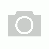 Fever Tree Ginger Beer 330ml - 4pack